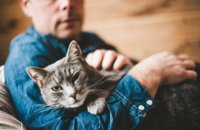Cats make us happier