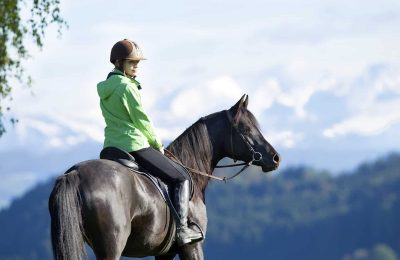 Which Horse Breed Should You Choose for Trail Riding