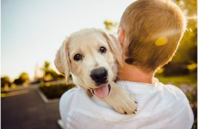 4 Tips to Keep Your Pup Happy and Healthy