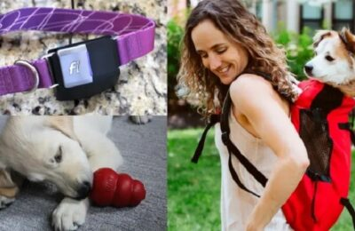 The perfect gifts for dogs and dog owners