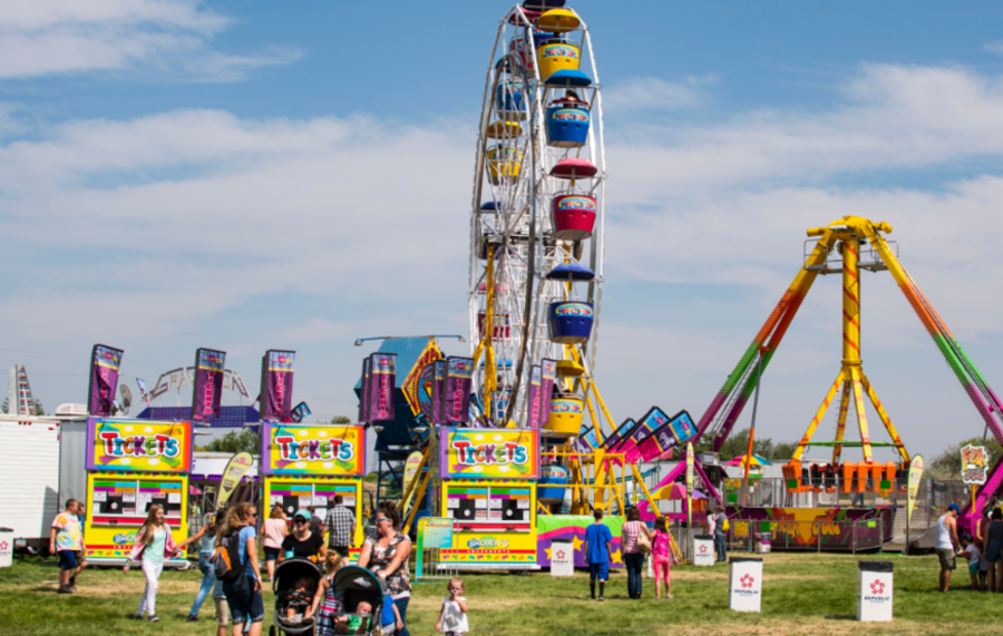 How To Enjoy Your County Fair
